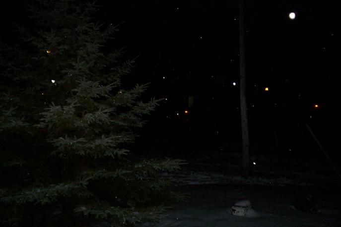 A Litte Frost